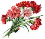floral-design-5