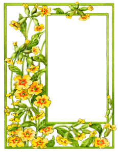 card_frame_yellow_flowers