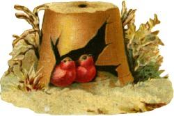 birds-broken-pot