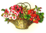 basket_pretty_flowers
