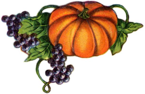 pumpkin-clip-art-5