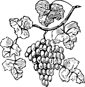 grapes_on_vine_BW