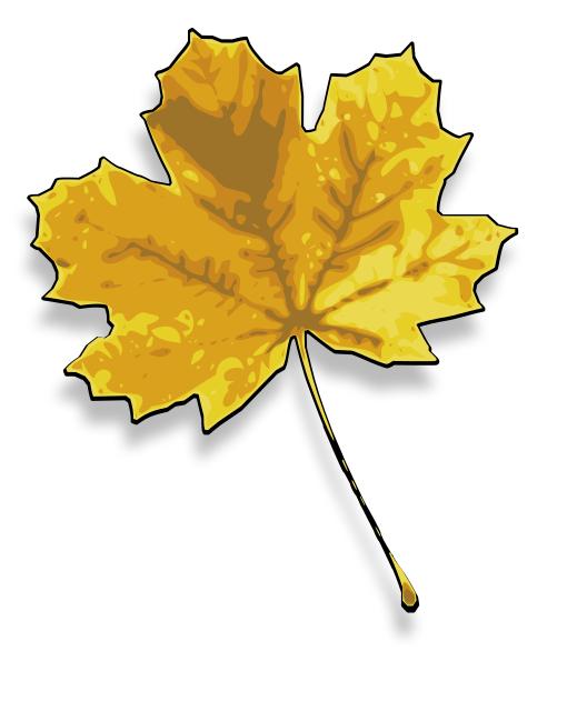 autumn_maple_leaf
