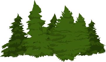 pine_cluster_2